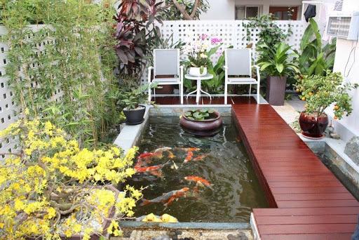 designing indoor koi aquarium
